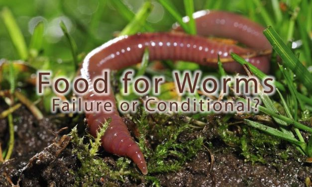 Food for Worms Failure or Conditional?